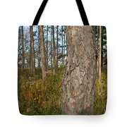 Red Pine Forest Tote Bag