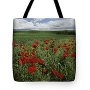 Red Poppies Edge A Field Near Moscow Tote Bag