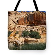 Red Rock Canyon The Tank Tote Bag