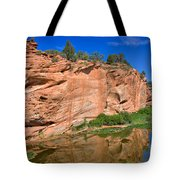 Red Rock Formation In The Kaibab Plateau In Grand Canyon National Park Tote Bag
