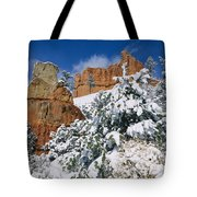 Red Rock Formations Poke Through A Late Tote Bag