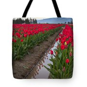Red Rows Tote Bag