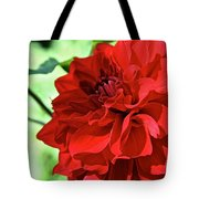 Red Ruby Dahlia Tote Bag