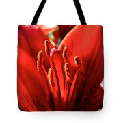 Red Rules Tote Bag