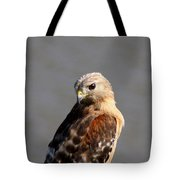 Red-shouldered Tote Bag