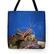 Red Shrimp Tote Bag