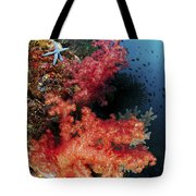 Red Soft Corals And Blue Leather Sea Tote Bag