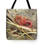 Red Soil Centipede - Strigamia Tote Bag