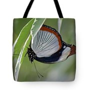 Red Spot Diadem Butterfly Tote Bag