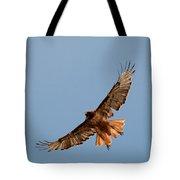 Red Tail Hawk 202-3 Tote Bag