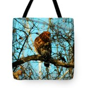 Red Tail Hawk Visitor Tote Bag