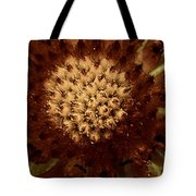 Red Tips Tote Bag