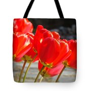 Red Tulip Flowers Art Prints Spring Florals Tote Bag