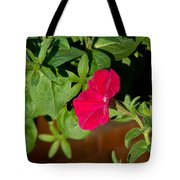 Red Velvet Petunia Tote Bag