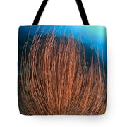 Red Whip Fan Coral With Diver, Papua Tote Bag
