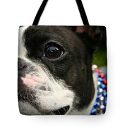 Red White And Boston Tote Bag