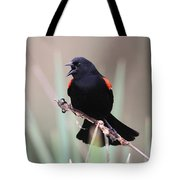 Red-winged Blackbird - Are You Listening Tote Bag