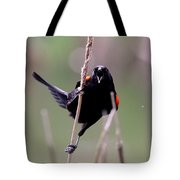 Red-winged Blackbird - Can You Hear Me Now Tote Bag