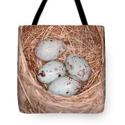 Red-winged Blackbird Nest Tote Bag