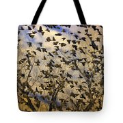 Red-winged Blackbirds At Sunset Tote Bag
