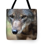 Red Wolf Closeup Tote Bag