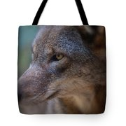 Red Wolf Stare Tote Bag