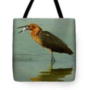 Reddish Egret Caught A Fish Tote Bag