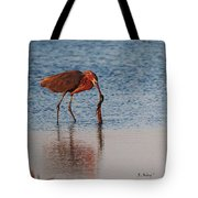 Reddish Egret Checking It Out Tote Bag