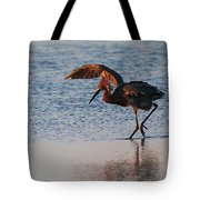 Reddish Egret Doing A Forging Dance Tote Bag