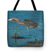 Reddish Egret Hunting Tote Bag