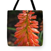Redhot Popsicle Tote Bag
