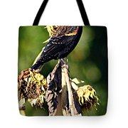 Redwinged Blackbird II Tote Bag