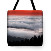 Redwood Clouds Tote Bag