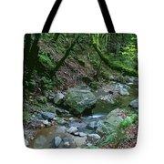 Redwood Creek Art Tote Bag