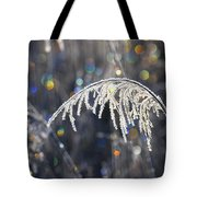Reed With Frost And And Color Tote Bag