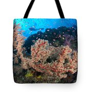 Reef Scene With Sea Fan, Papua New Tote Bag