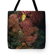 Reef Sponge Coral And Yellow Fish Tote Bag