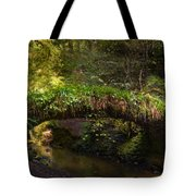 Reelig Bridge And Grotto Tote Bag