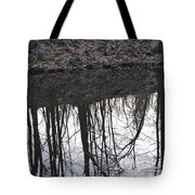 Refection Tote Bag