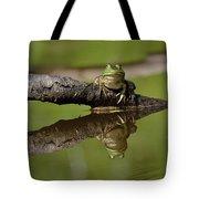 Reflecktafrog Tote Bag