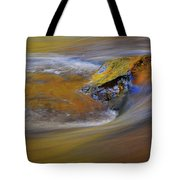 Reflected Autumn Color Tote Bag