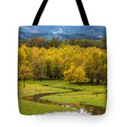 Reflected Seasons Tote Bag