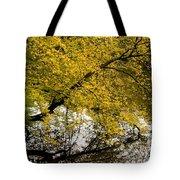 Reflecting Autumn Tree Tote Bag