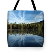 Reflecting Blue Tote Bag
