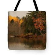 Reflecting On Autumn Tote Bag