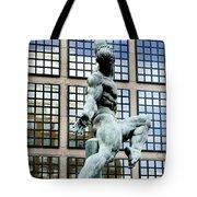 Reflecting Sculpture Tote Bag