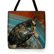 Reflecting Turtle Tote Bag