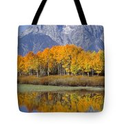 Reflection At Oxbow Bend Tote Bag