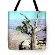 Reflection In The Canyon Tote Bag
