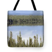 Reflection In Willow Lake Near Copper Tote Bag